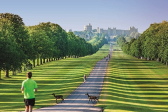 man running through the park, down the long road to the windsor castle